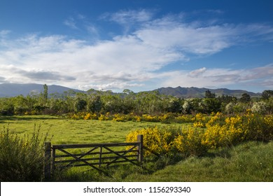 A closed wooden farm gate at the entrance to a rural farm field on a summers day