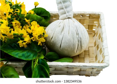 Closed up yellow flower of Burmese Rosewood or Pterocarpus indicus Willd,Burma Padauk and comoressing ball in basket isolated on white background.Saved with clipping path.