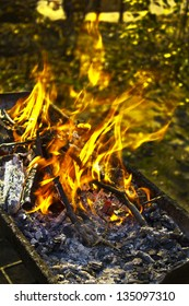 Closed-up campfire in barbecue in forest