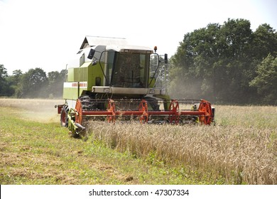 Closer to the big red harvester cutting down the ripe corn seeds