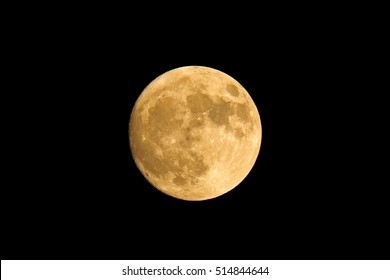 Closest supermoon, November 14, 2016. Full moon in the night, super detail of moon during autumn. Interesting astronomy phenomenon on the night sky.