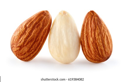 Closeup of almonds. Three nuts isolated on white background. Full depth of field.