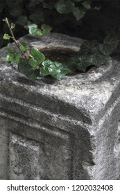 A close-up of an ancient carved stone artefact in the yard of the Rotonda Roman temple monument, a popular tourist attraction, in Thessaloniki, Greece, with ivy climbing on it.