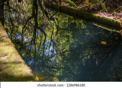 Closeup with the architecture of the water channel, Lagoa do fogo, Sao Miguel, Azores, Portugal
