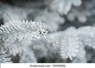 closeup of artificial snow on christmas tree