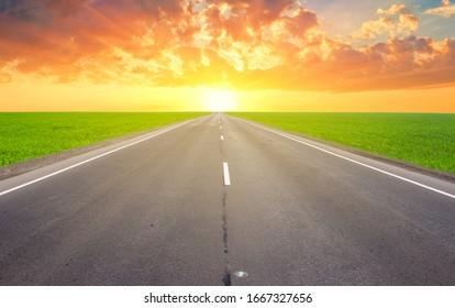 closeup asphalt road leaving far among green fields at the sunset
