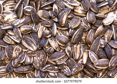 Closeup of an Assortment of Sunflower Seeds forming a solid background