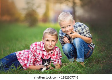 Closeup autumn portrait of cute brothers playing with cat