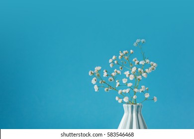 Closeup Baby's breath - gypsophilia paniculata - in vase on blue background.