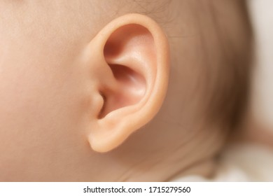 Closeup of baby's ear.  Hearing, and noise  concept.