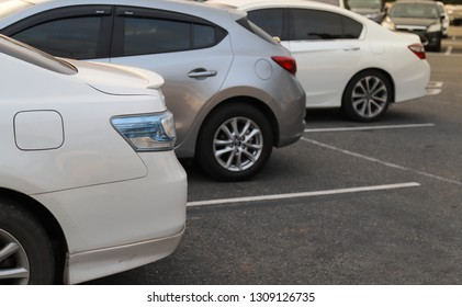 Closeup of back or rear side of white car and other cars parking in parking area with natural background in twilight evening. The mean of transportation in modern world.