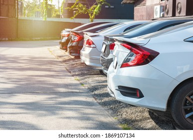 Close-up back view of white modern car with black trunk of row of cars and vans parked on asphalt on bright sunny day. Transportation and parking concept.