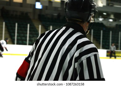 Closeup of the backside of a referee during a Canadian hockey game.