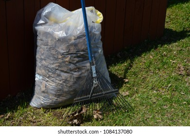 Closeup of a bagged pile of leaves.