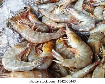 Closeup banana shrimp for sale in Bangkok Fresh Market . Fenneropenaeus merguiensis