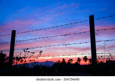Close-up of Barbed wire against sunset sky background.