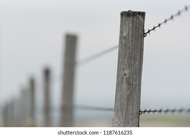 Closeup of barbed wire fence post in Alberta, Canada.