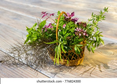 Closeup of a basket with fresh healing herbs from the garden.
