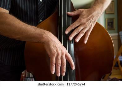 Closeup of a bass player's hands playing a double bass