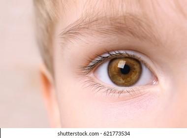 Closeup of beautiful boy eye