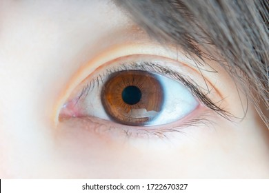 close-up of a beautiful eye and black hair