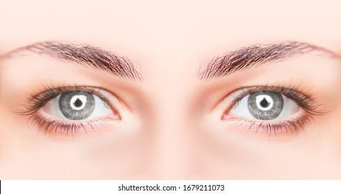 Atrapar un hermoso ojo gris con resplandor redondo en los ojos del zumbido de anillo
