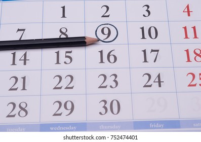 Closeup beautiful, interesting ninth digit is circled in the official weekly