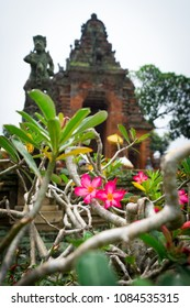 Closeup of beautiful pink adenium flowers with temple and statue on background, Bali, Indonesia