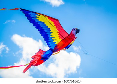 Closeup of a Beautiful Red Scarlet Macaw Kite Taking Flight during the Indian Kite Festival of Uttarayan