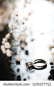 Closeup Beautiful Wedding Ring near gypsophilias