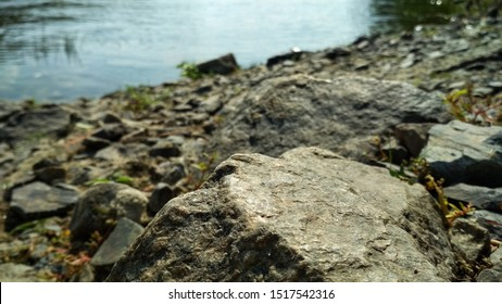 Close-up of big stones near the river. Rock formation near the river against the background of the forest.