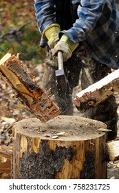 Closeup of birch wood being chopped on a stump.