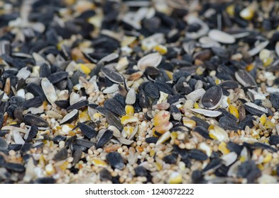Closeup of birdseed