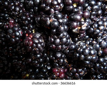 close-up blackberries
