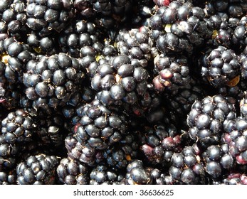 close-up blackberry