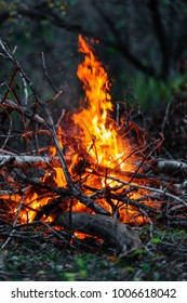 Closeup of blazing branches and firewood at night