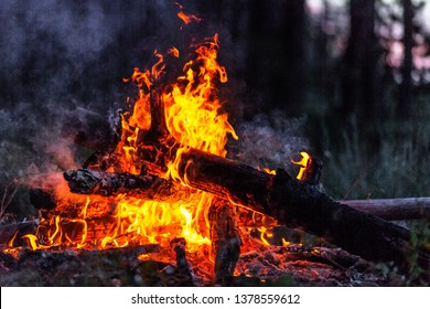 Closeup of blazing campfire in the evening