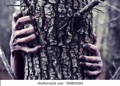 closeup of the bloody and scary hands of a zombie or monster who is hiding behind a tree in the forest