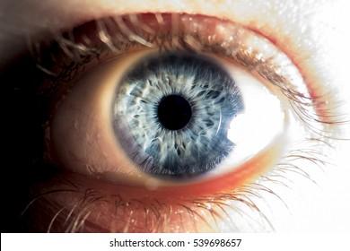 Closeup of blue human eye - Shutterstock ID 539698657