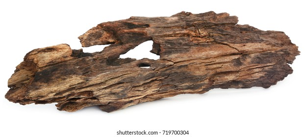 Closeup of bogwood over white background