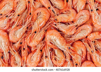 Close-up of boiled shrimps as a background