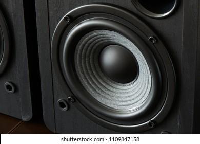 closeup of bookshelf speaker woofer for base sound