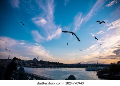 close-up of the Bosphorus in Istanbul showing the famous seagull - Shutterstock ID 1824790943