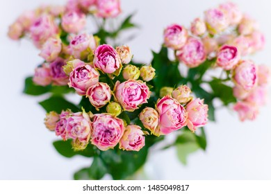 Close-up of Bouquet of pink spray peony roses.
