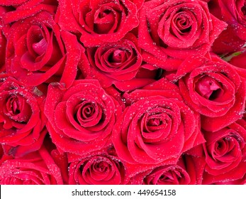 Closeup bouquet of red rose flower with water dew drops