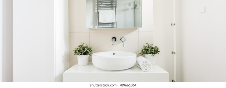 Close-up of bowl sink with shelf above it. On the unit two plants in a vase and folded towel