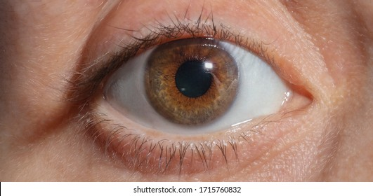 A Close-up brown woman´s eye