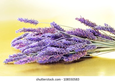 closeup of a bunch of lavender flowers