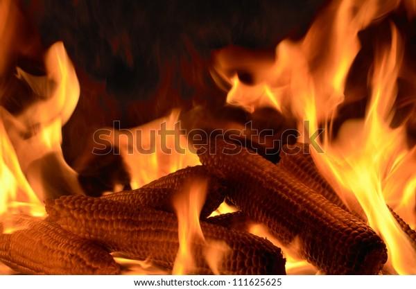 closeup of burning corncobs, studio shot, black background