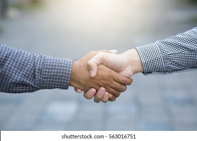 Closeup of a business hand shake between two colleagues Plaid shirt